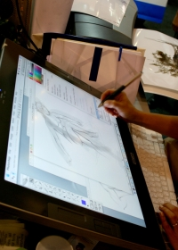 Graphics Designer Career requirements, Job Details, Salary